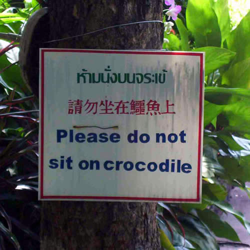 Sign attached to tree in Thai, Chinese and English that reads 'Please do not sit on crocodile'.