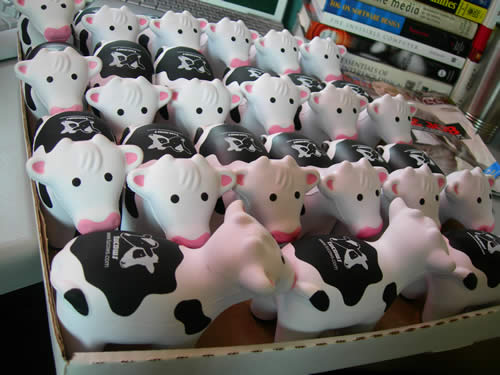 Box of squishy cows at the Tucows office