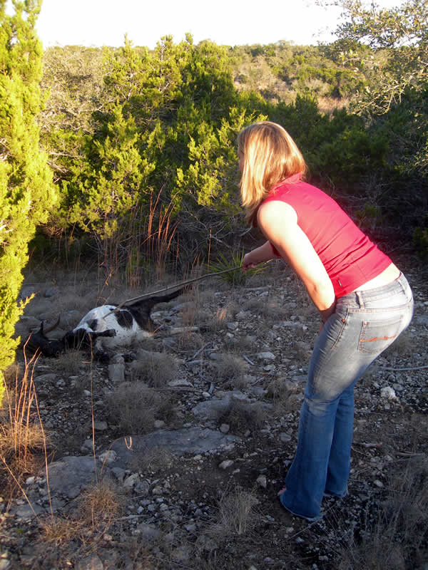 Darcie Vany pokes a dead goat with a stick