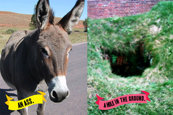 Comparison: an ass and a hole in the ground