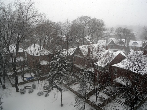 Snow-covered houses on Gothic Avenue