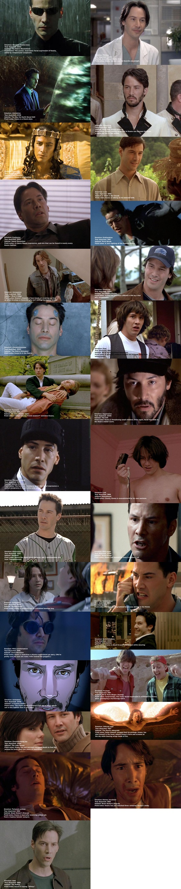 A montage of stills from many Keanu Reeves movies, showing his 2.5 facial expressions.