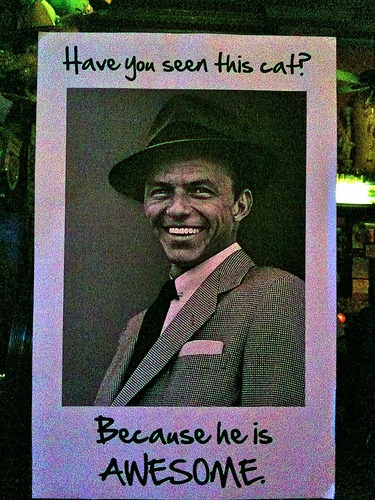 Post of Frank Sinatra - 'Have you seen this cat? Because he is AWESOME.'