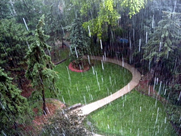 Heavy rain falling on a garden courtyard