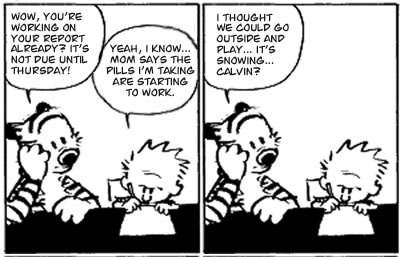 Calvin and Hobbes on Ritalin preview