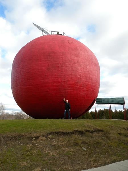 10 damir big apple 1