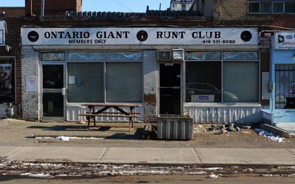 Ontario Giant Runt Club