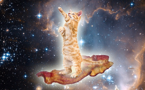 Marmalade kitten surfing on a slice of bacon through outer space