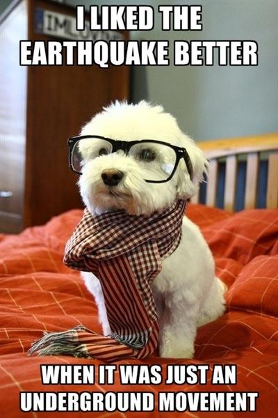 Hipster dog quake