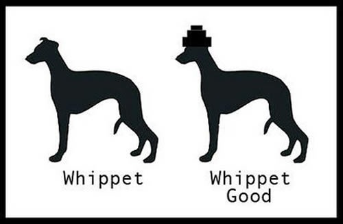 "Picture of two silhouettes of whippets. Whippet 1 is labelled ""Whippet""; Whippet 2 is wearing a Devo-style hat and labelled ""Whippet good""."
