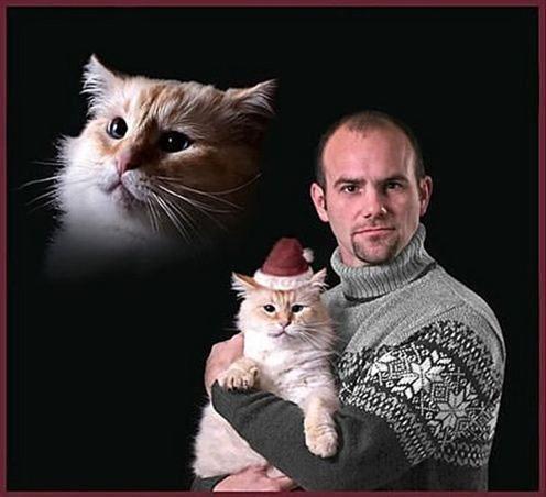 cat card 2