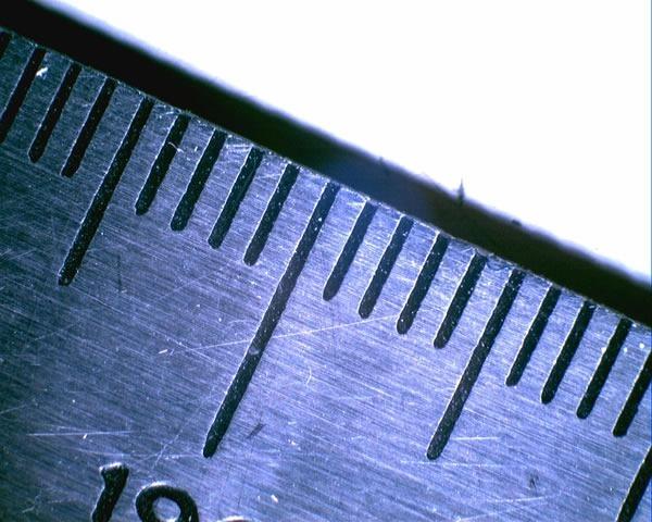 millimetre ruler