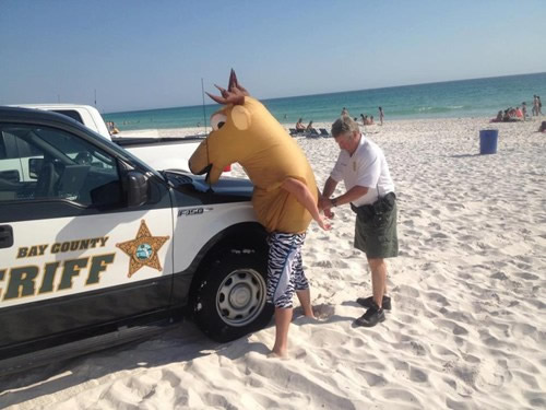 Bay County Sheriff officer handcuffs man in a moose costume