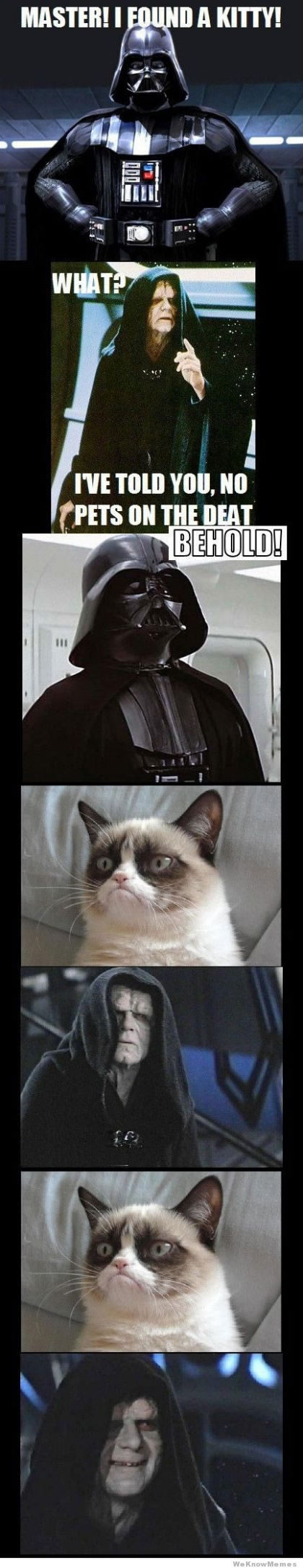 darth vader gets grumpy cat