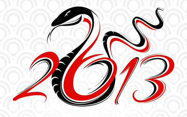 2013 - year of the snake