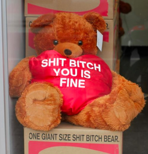 Teddy bar with heart that reads 'Shit bitch you is fine'