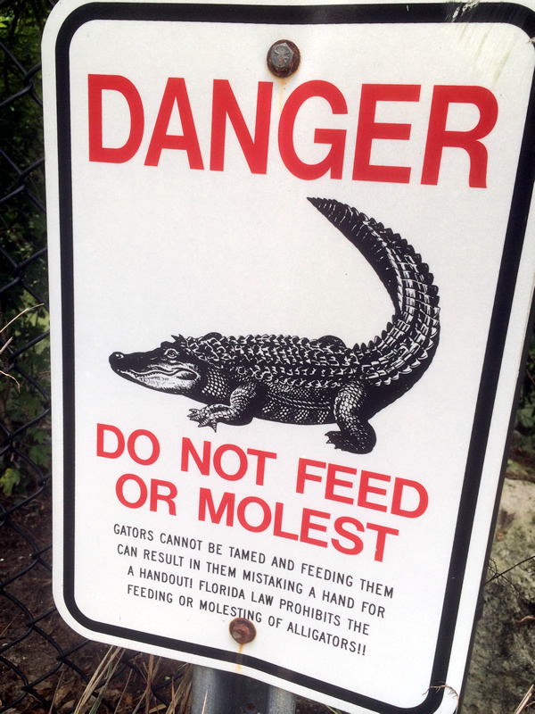 do not feed or molest