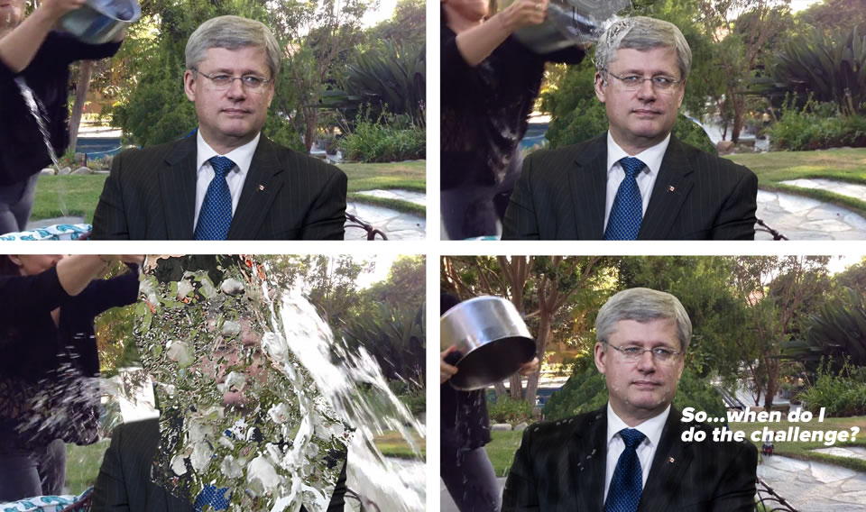 stephen harper ice bucket challenge