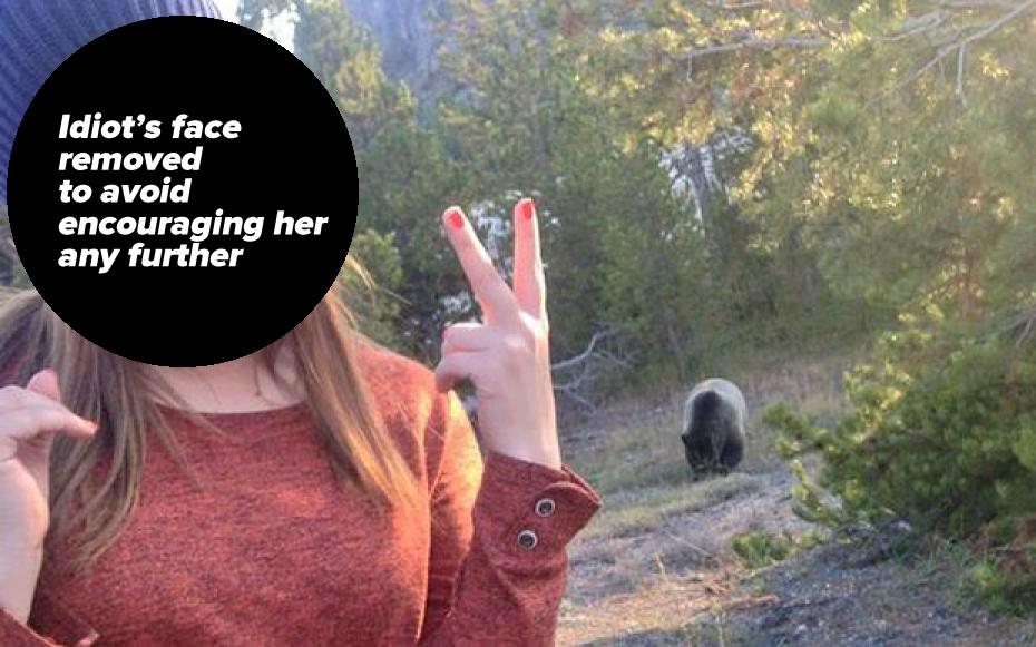bear selfie 2