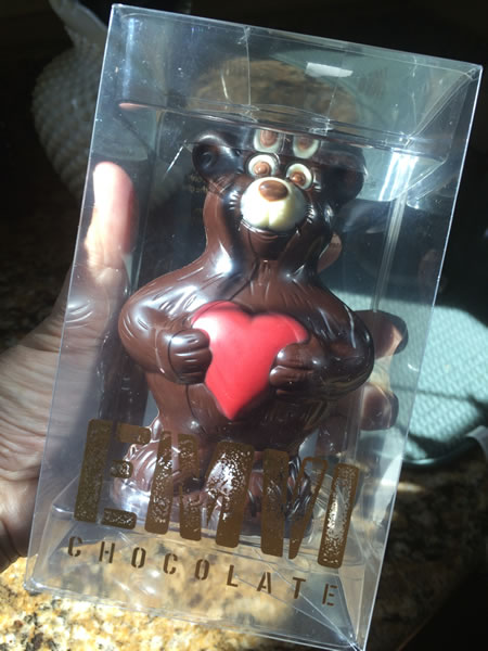 The chocolate bear I bought.