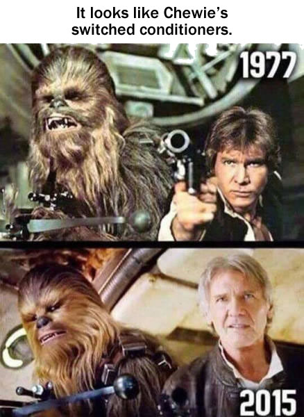 chewie switched conditioners