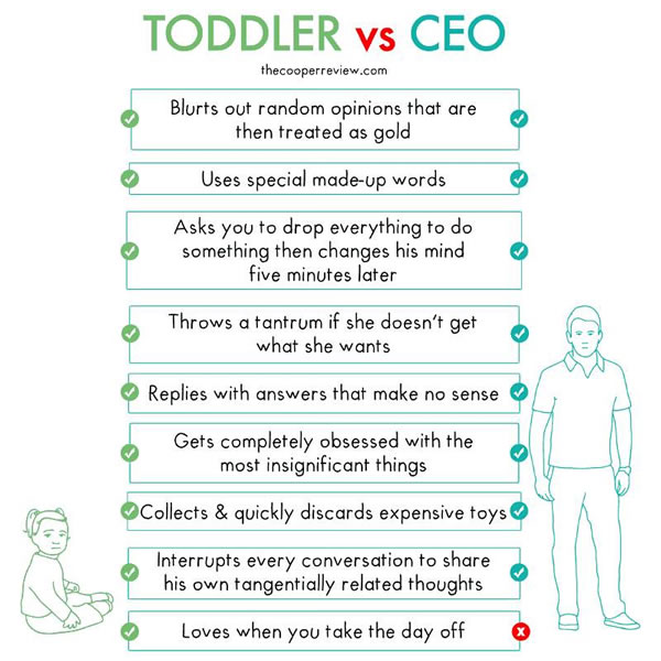 toddler vs ceo