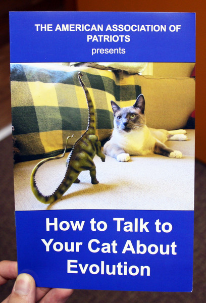 how to train your cat to talk