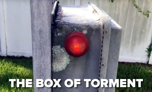 box-of-torment