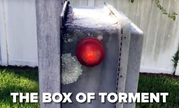 box-of-torment