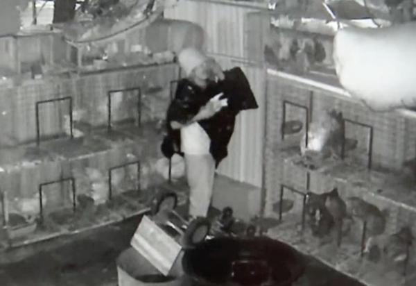 florida-thief-wearing-trash-bag-and-bucket