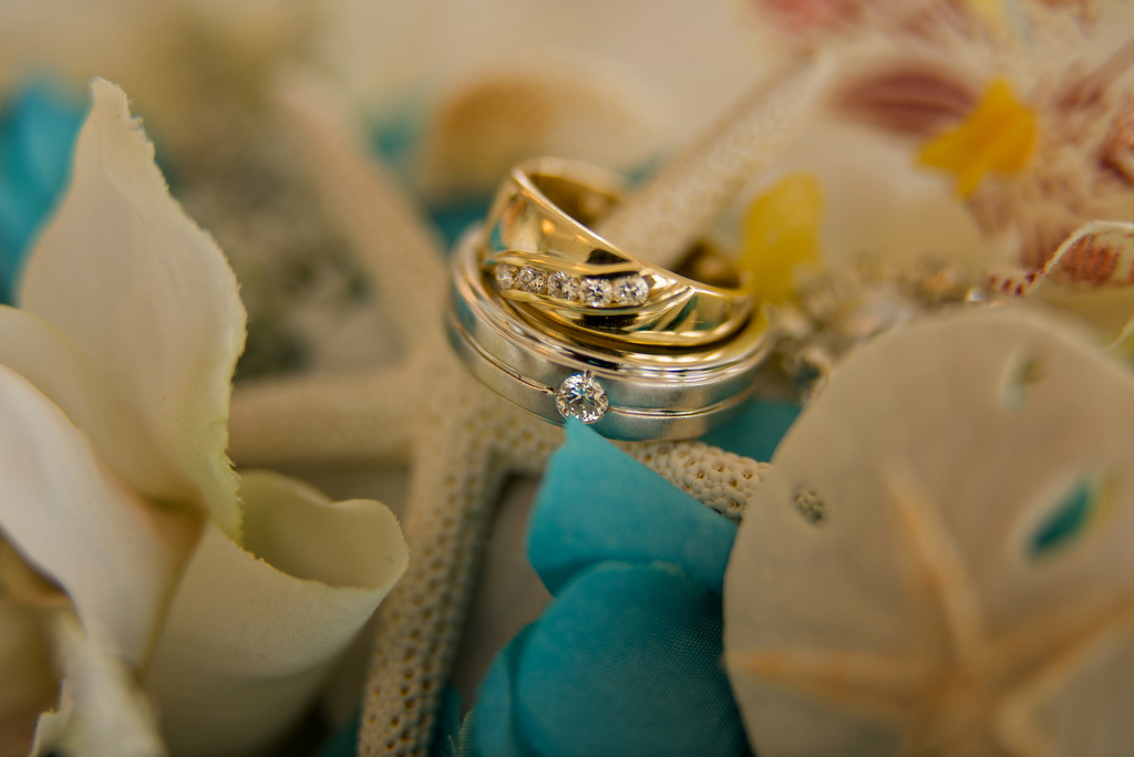 Close-up of Anitra's and Joey's wedding rings.