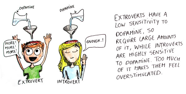Comic depicting an extrovert and introvert responding differently to dopamine. The extrovert says 'More! More! More!', while the introvert says 'Enough'. The caption reads 'Extroverts have a low sensitivity to dopamine, so require large amounts of it, while introverts are highly sensitive to dopamine. Too much of it makes them feel overstimulated.