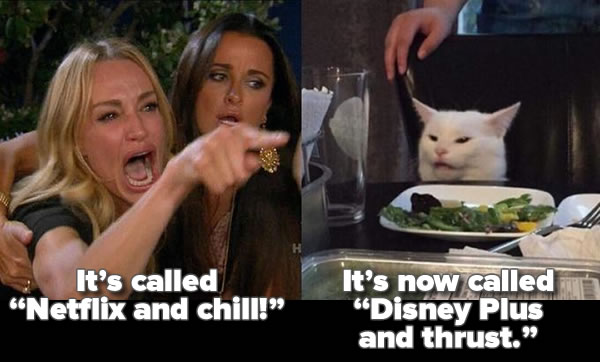 """Another """"Woman yelling at cat"""" meme, with the woman yelling """"It's called 'Netflix and chill!', and the cat responding """"It's now called 'Disney Plus and thrust'""""."""