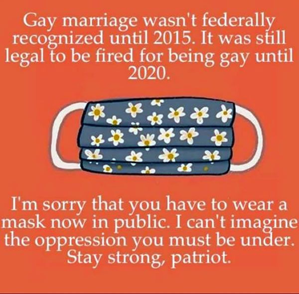"Poster: Mask, captioned with ""Gay marriage wasn't federally recognized until 2015. It was still legal to be fired for being gay until 2020. I'm sorry that you have to wear a mask now in public. I can't imagine the oppression you must be under. Stay strong, patriot."""