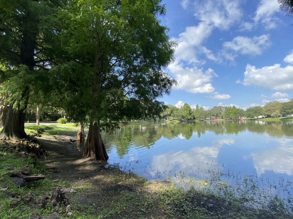 Photo: The southern edge of Lake Roberta (actually a pond) as seen from its west side. The lake is lined with trees, and its still waters reflect the clouds and blue sky above.