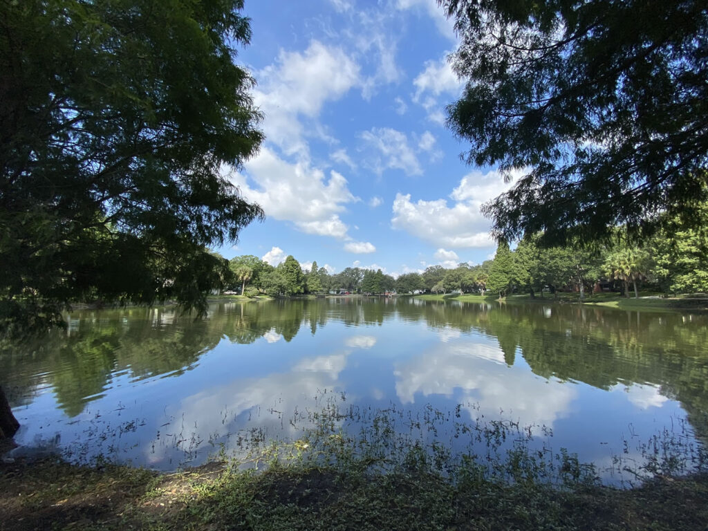 Photo: The middle of Lake Roberta (actually a pond) as seen from its west side. The lake is lined with trees, and its still waters reflect the clouds and blue sky above.
