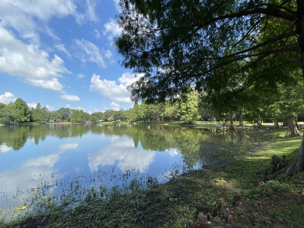 Photo: The northern edge of Lake Roberta (actually a pond) as seen from its west side. The lake is lined with trees, and its still waters reflect the clouds and blue sky above.
