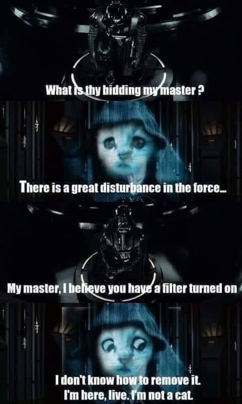 "Stills from the ""Darth Vader talks to the Emperor"" scene from ""The Empire Strikes Back"". Darth Vader: ""What is thy bidding, my master?"" Emperor, but with cat filter: ""There is a great disturbance in the Force..."" Darth Vader: ""My master, I believe you have a filter turned on"" Emperor: ""I don't know how to remove it. I'm here, live, I'm not a cat."""